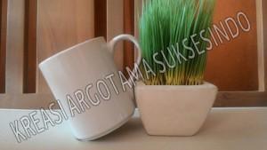 2 mug polos putih copy